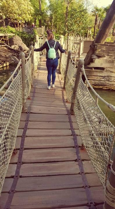 Adventure land bridge